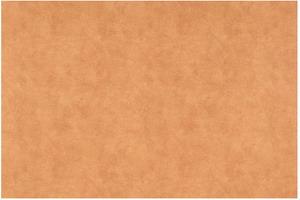 Материал: Canvas, Цвет: Pelle_camel