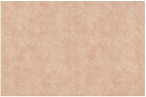 Материал: Canvas, Цвет: Pelle_mica