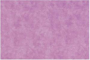 Материал: Canvas, Цвет: Pelle_violet