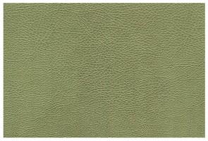 Материал: Каррера (Carrera), Цвет: pistachio
