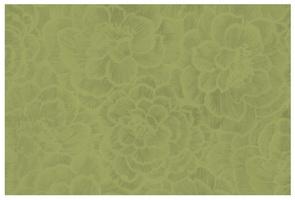 Материал: Мирелла (Mirella), Цвет: pistachio