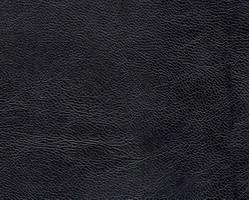 Материал: Капро (Kapro), Цвет: black