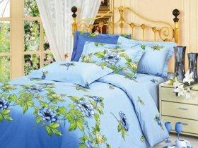 Полуторный комплект постельного белья Голубая клеопатра -713