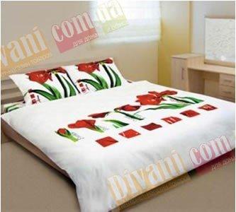 Полуторный комплект постельного белья Сoleen -622-Лілія червона
