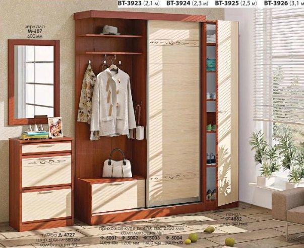 Прихожая Софт (ВТ-3923-3926) Комфорт Мебель
