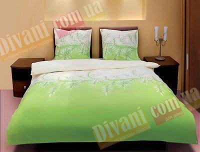Евро комплект постельного белья Зеленая верба -588