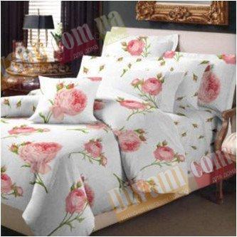 Двухспальный комплект постельного белья Ампельная роза -718