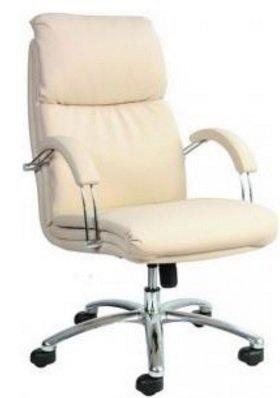 Кресло для руководителя Nadir steel LB (низкая спинка)