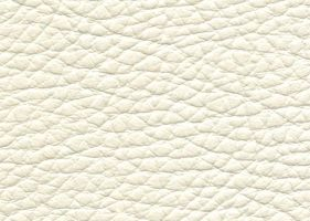 Материал: Долларо (Dollaro), Цвет: Bianco-21