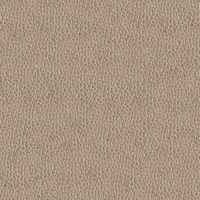 Материал: Альфа (Alfa), Цвет: 2303-06