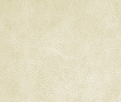 Материал: Лавина (Lavina), Цвет: Cream