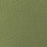 Материал: Мадрас (), Цвет: Olive
