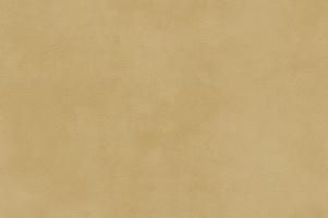 Материал: Мустанг (Mustang), Цвет: Gold