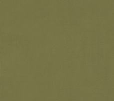 Материал: Пера (Pera), Цвет: Green_71