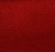 Материал: Пленет (Planet), Цвет: 24_red