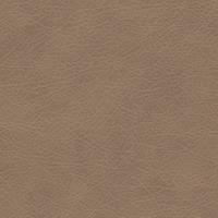 Материал: Титан (), Цвет: Cream