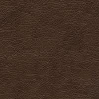 Материал: Титан (), Цвет: Dark_Brown