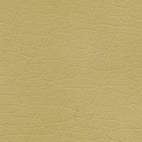 Материал: Титан (), Цвет: Gold_Beige