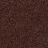 Материал: Титан (), Цвет: Kashtan