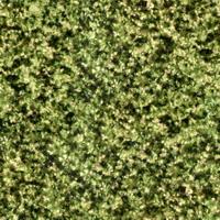 Материал: Верона (), Цвет: 3603-1964