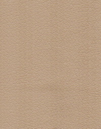 Материал: Зевс делюкс (Zeus Deluxe), Цвет: Dove
