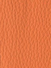 Материал: Dollaro (), Цвет: 529