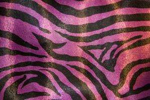 Материал: Зебра (Zebra), Цвет: 479