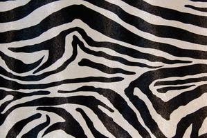 Материал: Зебра (Zebra), Цвет: 480