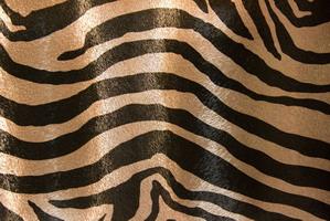 Материал: Зебра (Zebra), Цвет: 481