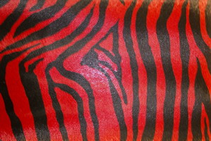 Материал: Зебра (Zebra), Цвет: 483