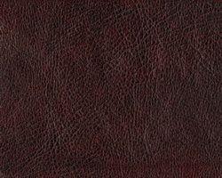 Материал: Кондор (Kondor), Цвет: 54
