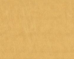 Материал: Родео (Rodeo), Цвет: 01