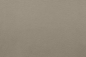 Материал: Торо (Toro), Цвет: 926