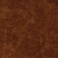 Материал: Pelle Nobile - Cabinet (), Цвет: Oak